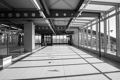 Flughafenbahnhof2018#1 (henningpietsch) Tags: 2018 düsseldorf flughafen lohhausen sigma20mmf14dghsm art015 sigma sigmaobjektiv sigmalens weitwinkel wideangle bahnhof architektur architectue bw blackandwhite schwarzweis sw