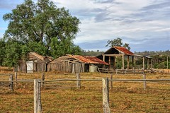 The white door. (Ian Ramsay Photographics) Tags: mounthunter newsouthwales australia camden kilometres timber tin roofing elements fate political decisions generations survived progressed time worked dairy
