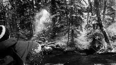 retouche-1000797NB (Jeffray12) Tags: cascadesduherisson foret forêt bois neige riviere herisson