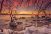 MKE Freeze (andrewslaterphoto) Tags: boulderpoint clouds cold freeze greatlakes ice lakemichigan landscape longexposure milwaukee nature outdoors snow sunrise tree winter canon branches landscapephotography 5dmarkiii leefilter