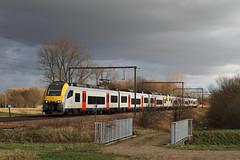 NMBS 8104 @ Linkhout (Peter Van Gestel) Tags: lijn ligne 35 linkhout desiro