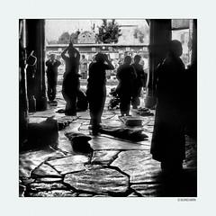 Believers003 (siggi.martin) Tags: tibet tibeter tibetans asien asia viele many menschen people tradition westtibet westerntibet kloster monastery buddha buddhismus buddhism pilger pilgrims glaube belief tibetisch tibetan lhasa dschokhang jokhang tempel temple hingabe devotion hingebungsvoll devoted schummrig dim steinplatten flagstones steinplattenboden flaggedfloor