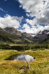 Verso l'Alpe Dosdè (cesco.pb) Tags: valtellina valviola alpedosdè lombardia lombardy italia italy canon canoneos60d tamronsp1750mmf28xrdiiivcld alps alpi montagna mountains