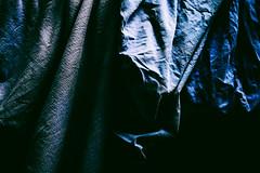 2nd Butler - excerpt. (wolfiwolf) Tags: wolfiwolf wolfiart wolf wolfiwolfy wolfskunst blau blue bleu universum universe dassein pur kraftvoll strotzendvorkraft etwasganzbesonderes eneamaemü zentrum zensibel gesund wiederganzderalte er ihmzurehr ernsthaft derernsteste freundlich derfreundlichste wanngibtswiederrhabarber oderanderegutesachen woistmeingulasch butler zweibutler zweibutlerhabeich ichhabezweibutler ichfeiere lassetunsstillwerden i duneet kannapee