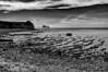 Baie de l'Aiguillon (Fabrice Denis Photography) Tags: seascapephotography noiretblanc bwphotography carrelet coastalphotography monochromephotography sea blackandwhitephotos cabanedepêcheurs blackandwhitephotographer ocean monochrome coastal oceanphotography blackandwhite seascapephotographer seascapes seascapephotos blackandwhitephotography esnandes nouvelleaquitaine france fr
