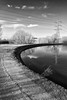 Walthamstow Wetlands (Francis Mansell) Tags: water reflection tree cloud sky pylon powerlines curve reservoir walthamstowwetlands walthamstow monochrome blackwhite niksilverefexpro2 london naturereserve thameswater