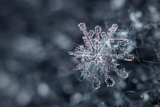 Snowflake n° 16 - Winter 2017-2018 - Switzerland
