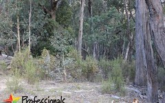 299 Mt Haven Way, Meadow Flat NSW