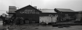 Jessie's Ilwaco Fish Company, Ilwaco, Washington