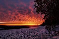 Burning sky (SecureTheMoment) Tags: sunrise burningsky himmel sonnenaufgang snow winter sunset cloud clouds wolken morgenstimmung morning thüringen ilmenau ilmkreis nikon sigma securethemoment landscape landschaft landschaftsfotografie natur naturphotography naturelover
