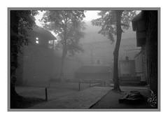 Castle in fog (orichier) Tags: dark middleages blackandwhite french medieval old stone tree fog castle hautkoenigsbourg alsace france