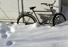 2689 (www.ilkkajukarainen.fi) Tags: suomi suomi100 finland eu europa winter talvi lumi snow bike pyörä polku armeija armeijan pijha happy life travel traveling visit espoo finlande jäjet lumessa