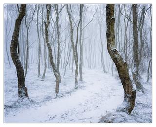 BoleHill Snow Storm