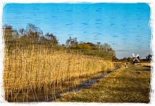 Wicken Fen - Cambridgeshire