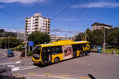 Wallace Street (andrewsurgenor) Tags: transit transport publictransport nzbus gowellington electric trackless trolleybus trolleybuses wellington nz streetscenes bus buses omnibus yellow obus busse citytransport city urban newzealand
