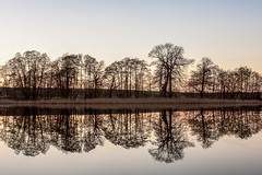 Symmetrie (renatecamin) Tags: trees lake spiegelung reflection