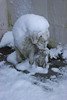 01Hondjes (lifetol74) Tags: snow sneeuw sluiskil zeeland zeeuwsvlaanderen zealandicflanders zealand netherlands nederland