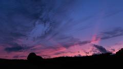 Colors of nature... (Mare Crisium) Tags: coucher de soleil sunset nature silhouette sky ciel arbre tree nuages clouds sunbeam rayons bleu blue noir black pink rose groupenuagesetciel