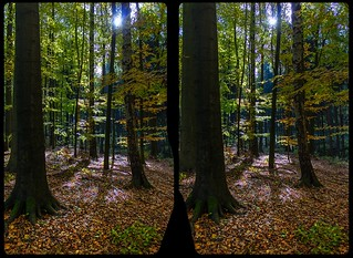 Höllengrund in fall 3-D / CrossView / Stereoscopy / HDR / Raw