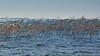 Wind (Pluie du matin) Tags: hatman lac lake vent wind roseaux hourtin gironde payasge landscape