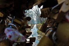 Bridge of love (Jelena Ristic) Tags: bridge love river tree