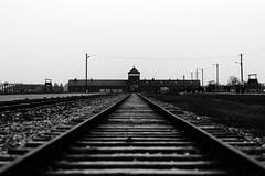 Per non dimenticare (F@bio F.) Tags: bianco nero monocromatico memoria genocidio birkenau olocausto grigio black white bw monochrome holocaust genocide memory