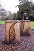 The Carved Stools (daveseargeant) Tags: rochester medway vines leica x typ 113