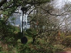 Wind chimes set up for recording, near highest point of Hunter's Path, Teign Gorge (Philip_Goddard) Tags: europe unitedkingdom britain british britishisles greatbritain uk england southwestengland devon dartmoornationalpark drewsteignton teignvalley teigngorge hunterspath huntinggate windchimes davisblanchard