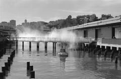 Pier 15 (delge) Tags: sanfrancisco bayarea kodak kodaktrix kodaktrix400 trix400 trix canon canon1n 35mm 50mm film pier fog