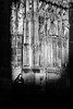 Sous surveillance (loroche25) Tags: cathédrale strasbourg lumière france alsace canon canon24105f4 noirblanc noiretblanc blackandwhite negroyblanco monochrome