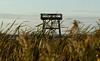 Dixon_JB_281_3643 (Joanne Bouknight) Tags: dixonwaterfowlrefuge illinois observationtower sunset thewetlandsinstitute