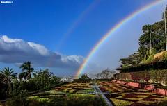 Rainbow garden (Mauro Hilário) Tags: sky rainbow double garden colour scenery funchal madeira botanical green beautiful amazing island portugal