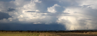 Panorama, Wild winter afternoon at Elmley NNR