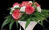I COLORI DELLA NATURA. (Salvatore Lo Faro) Tags: fiori natura nature rosa rossa bianca bianco verde vaso salvatore lofaro canon g16