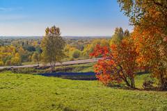 Autumn paints (Marat Assanov) Tags: autumn september littlekorely arkhangelsk sky grass trees colours