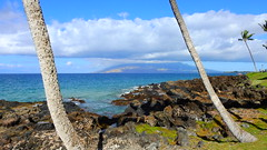 Aloha Maui (Jim Mullhaupt) Tags: maui hawaii pacificocean beach island southpacific surfing surf vacation holiday travel usa family kids jimmullhaupt surfers waves boating coral volcano exotic wallpaper clouds sky mountains landscape water waterfalls palms coconut bikini swim snorkel dive reef photo flickr geographic picture pictures camera snapshot photography nikoncoolpixp900 nikon coolpix p900 nikonp900 coolpixp900