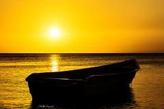 Te Quiero...!!! (Nita_Fotos) Tags: sun sundown clouds blue orange sol atardecer nubes naranja cielo reflection reflejos agua backligh contraluz mar océano marcaribe caribbeansea lecheria venezuela tuniñasalvajedelaselva