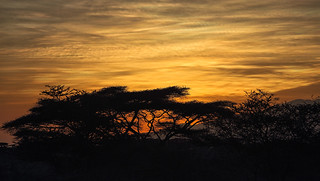 Ndutu Sunrise Colours