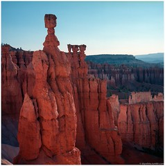 Bryce Canyon (Boris Boogiebass) Tags: brycecanyon nature nationalpark utah rolleiflex rolleiflex28f planar8028 carlzeiss 6x6 220mmfilm konicaprofessional160 expiredfilm c41 colorfilm filmphoto film outdoor waistlevel tlr