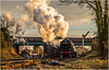 Scenes from galas past (2) (Peter Leigh50) Tags: gcr great central railway steam br class 7 70013 olivercromwell quorn train rural railroad winter gala 2015 locomotive engine sun late afternoon people