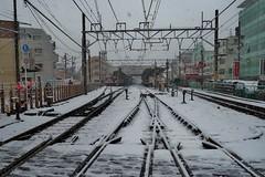 Tokyo snow (namhdyk) Tags: tokyo winter snow january canon canonpowershot canonpowershotg7x
