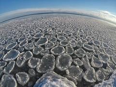 my little frozen planet (Marc McDermott) Tags: lakeontario water sky ice gopro hero5 winter cold frozen wide fov fisheye ontario canada