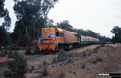 3130 DA1573 Jarrahdale No 1 4 July 1982 (RailWA) Tags: railwa philmelling westrail 1982 da1573 jarrahdale no 1