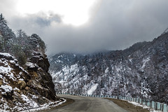 Wherever the road takes us!! (abhishek.verma55) Tags: road path himalaya hills himalayas mountainside flickr incredibleindia indiatravel india snow snowcapped nathula nathulapass ©abhishekverma travel travelphotography travelphotos photography tsomogolake hillside mountains mountain canon550d view scenery scenic scene nature naturephotography natureatitsbest naturelovers landscape landscapelovers landscapelover landscapes sikkim eastsikkim sun clouds cloudy cloudscape cloud sky sunrays rock outdoor outdoors white trees tree winter cold