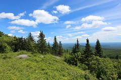 Mt Kearsarge State Forest Park, NH (russ david) Tags: mt kearsarge state forest park new hampshire nh landscape june 2017