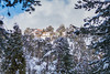 Snow at Troodos (385) (Polis Poliviou) Tags: snow nationalpark troodosmountains cypruscountryside clouds cloudy 2018 countryside freezing cyprus lovenature love naturepictures naturepics forest rural mount mountain mountains pinewood cold frost winter pinetrees pinetree mediterranean forestpark nationalforestpark olympus peak frozen morning environment nature ice snowtrees snowtree sports island cyprustheallyearroundisland cyprusinyourheart yearroundisland zypern republicofcyprus κύπροσ ©polispoliviou2018 polispoliviou polis poliviou πολυσ πολυβιου lovecyprus ski skateboard skiing skiers wood green earth canon