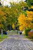 South Calgary Alley Autumn (pokoroto) Tags: south calgary alley autumn カルガリー アルバータ州 alberta canada カナダ 10月 十月 神無月 かんなづき kannazuki themonthwhentherearenogods 平成29年 2017 october