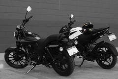 Small Bikes: Big Fun II (F051) Tags: bnw blackandwhite blancoynegro highcontrast nikkor18 50mm18 biker motorcycle bike bikes d100 nikon