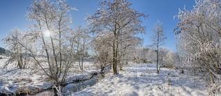 *Winterpanorama an der Alf*