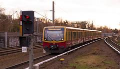 "Berlin S-Bahn Zug ""Berlin Brandenburg"" 30.1.2018 (rieblinga) Tags: berlin sbahn sonderzug brandenburg kunst bilder 3012018 südende s26"
